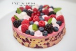 Entremet aux fruits rouges-4 label
